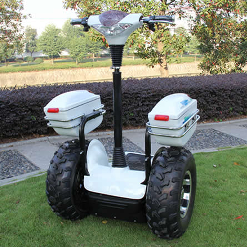 Photosynthetic plus box four standing electric scooter sightseeing car sport utility vehicle atv automatic scooter