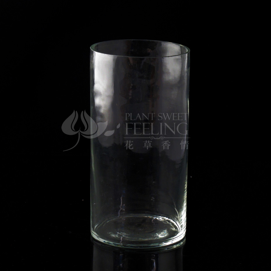 [Love] fragrant flowers transparent glass vase hydroponic vase bevel high fashion crystal glass flower vase