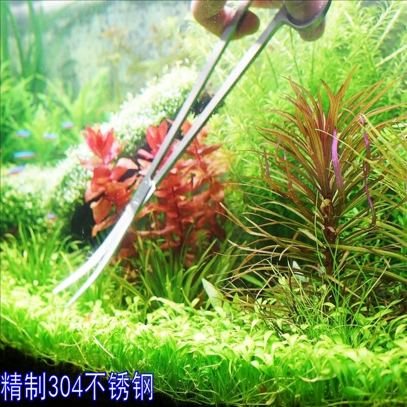 27cm long waterweeds brushed stainless steel tweezers planting aquatic plants landscaping folder clip straight head elbow