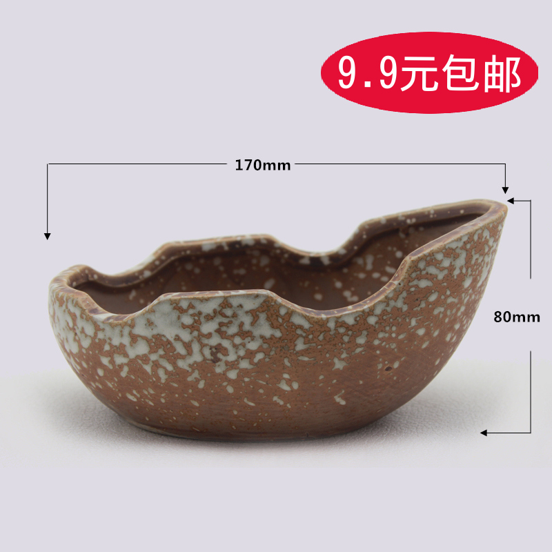 57-1 indoor succulents ceramic pots plastic pots large potted plants flower garden flower creative arts and free postage