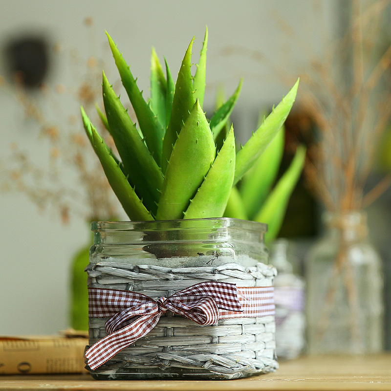 Aloe suit artificial flowers artificial flowers decorative flowers green plant simulation potted bonsai desk furnishings small ornaments
