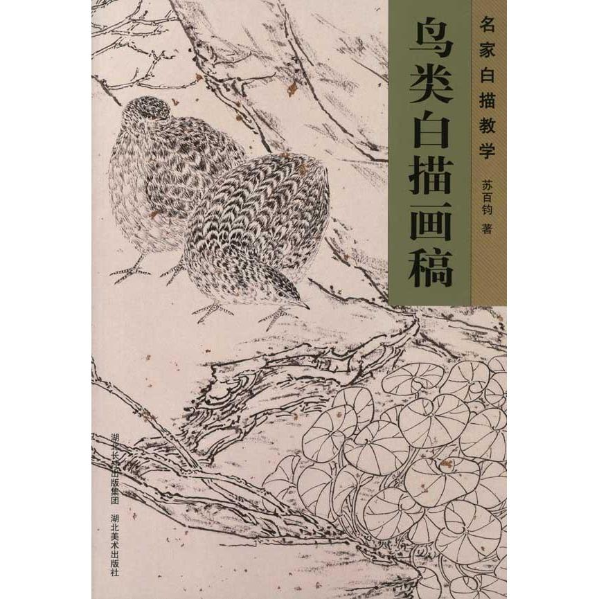 Bird line drawing drawings art materials genuine selling books book