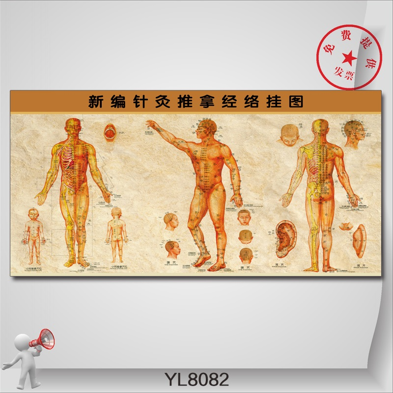 Chinese culture posters massotherapy new acupuncture meridian chart wall charts in hospitals and clinics decorative wall chart wall charts