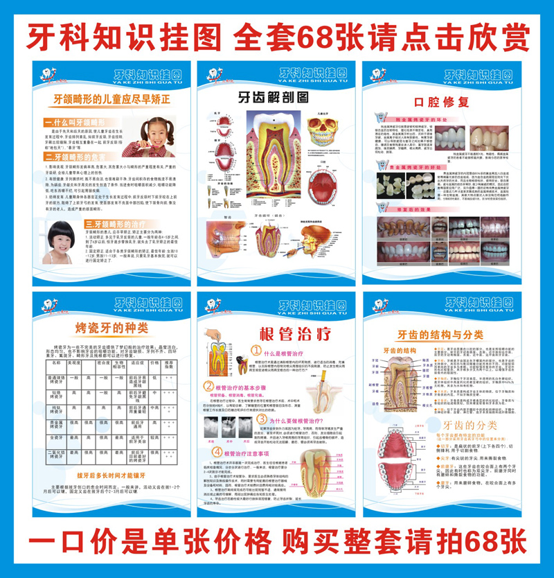 Dental knowledge posters/wall charts dental/dental flipchart/dental knowledge hanging figure/dental posters
