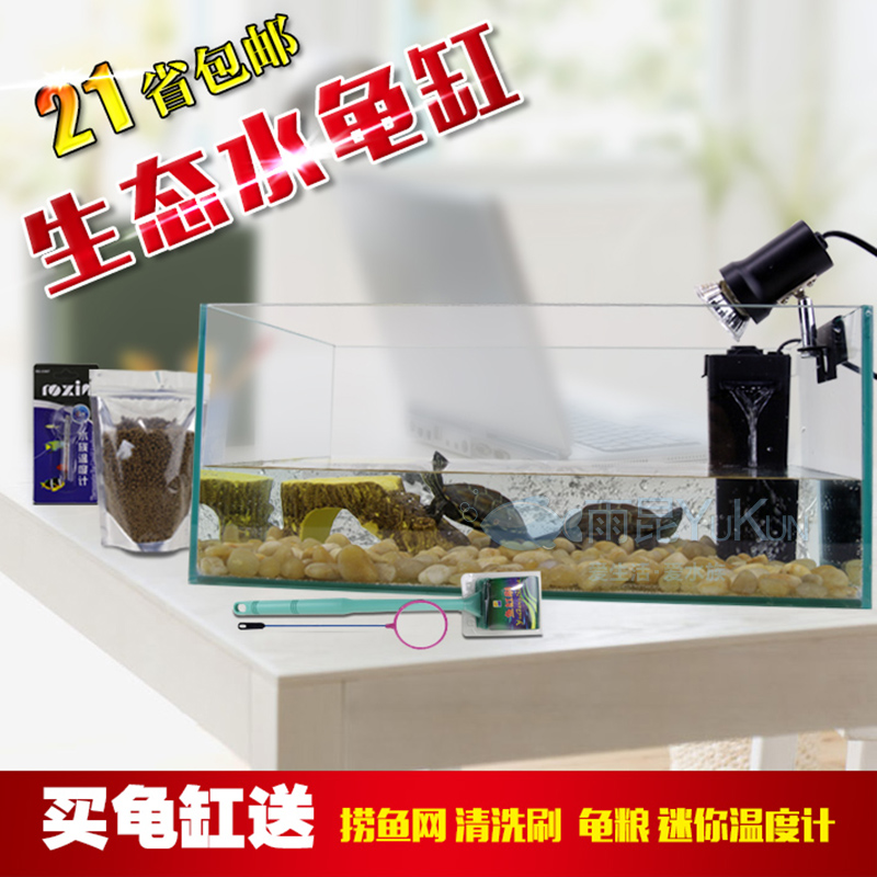 Ecological turtle tank water turtle tank turtle tank terrace turtle basking turtles feed the turtle tank filter combo