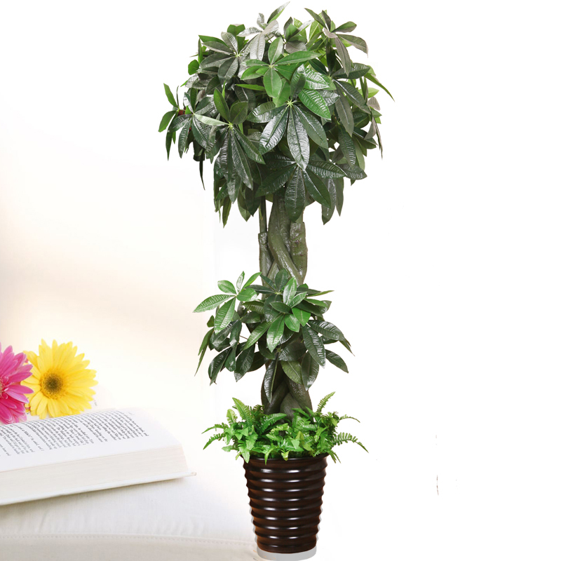 Fake tree simulation tree pachira large living room floor potted plants bonsai artificial flowers artificial flowers plastic flower decoration artificial plants