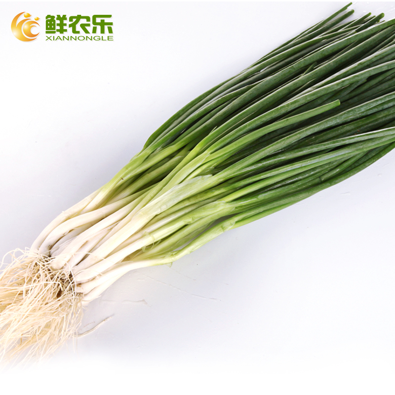 [Fresh] nongle farm onion 300g/copies shallot seasoning seasoning vegetables fresh vegetables city distribution