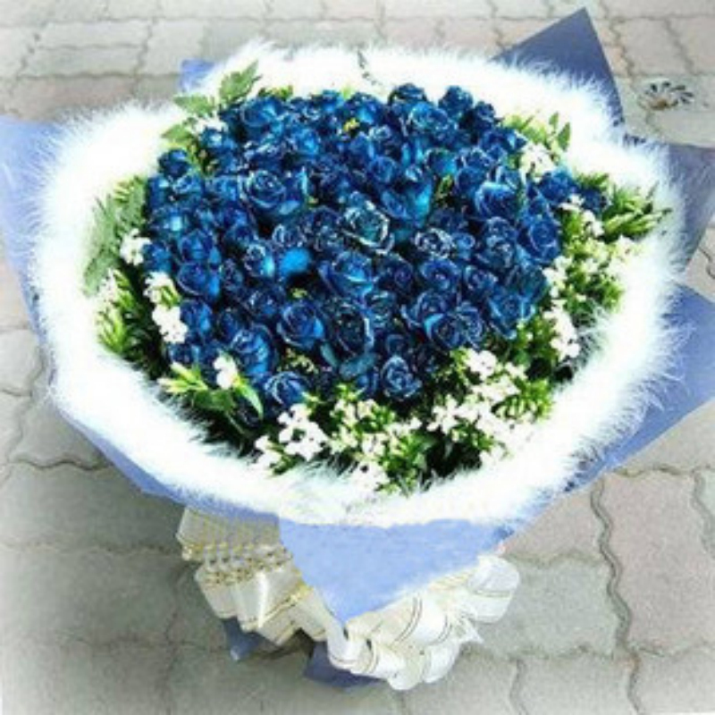 Harbin city flower delivery 40 bluelover tanabata valentine's day reservations sanming florist qiqihar