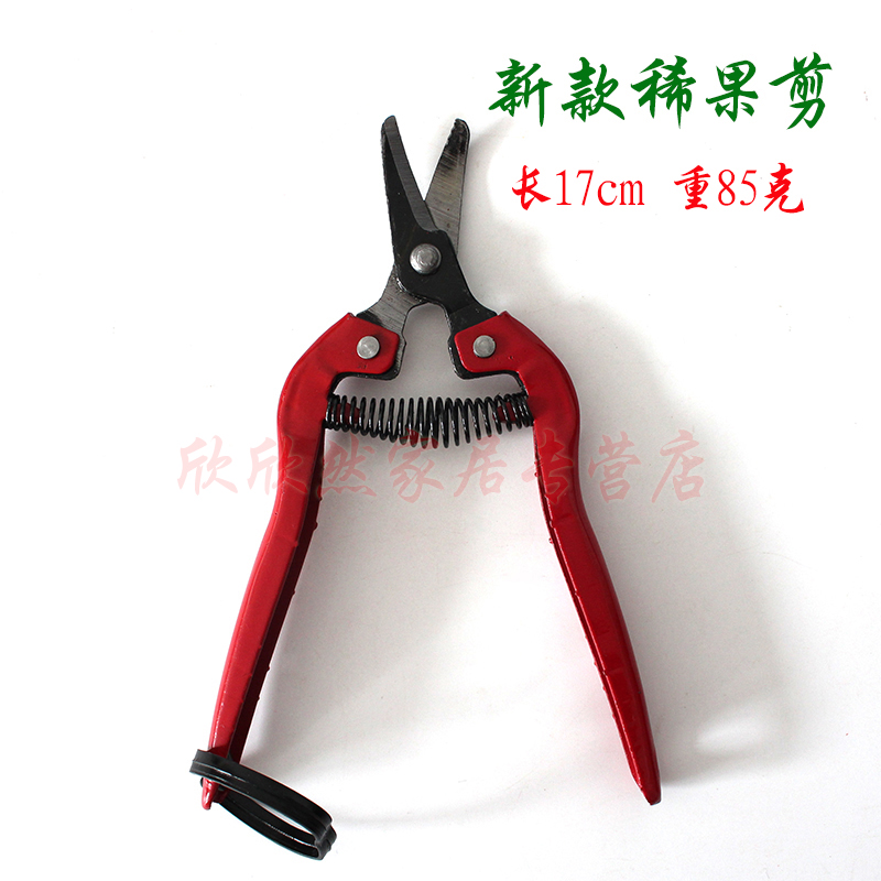 Horticultural farm picking fruit picking scissors cut small scissors shears pruning shears thinning shears cut fruit sticks scissors scissors cut a small spring