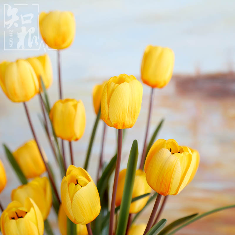 Know the root of high artificial flowers tulip 5 living room dining table flower decoration flower decoration dried flowers artificial flowers silk flower floral wedding