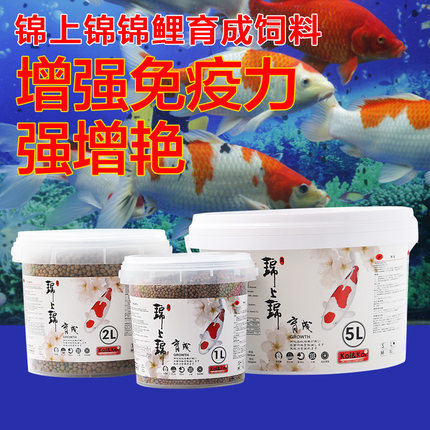 Koi feed bred germ koi feed increased body brightening blood parrot fish food barrels barrels 1l