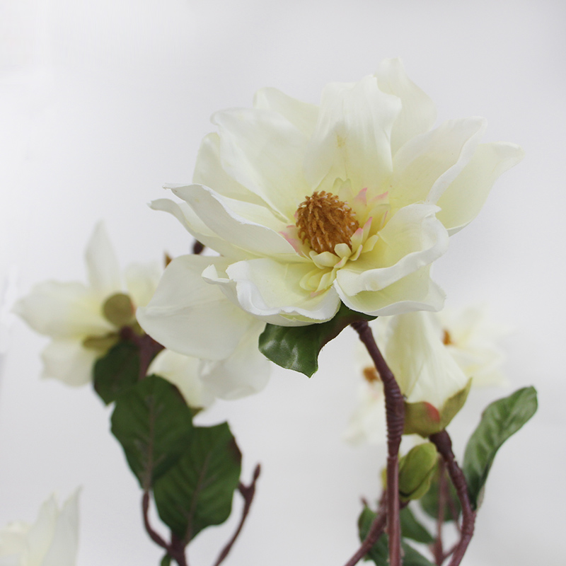 China fake white flowers china fake white flowers shopping guide at get quotations lamome carolina jasminechinese big magnolia milky white living room placed fake flowers artificial flowers mightylinksfo