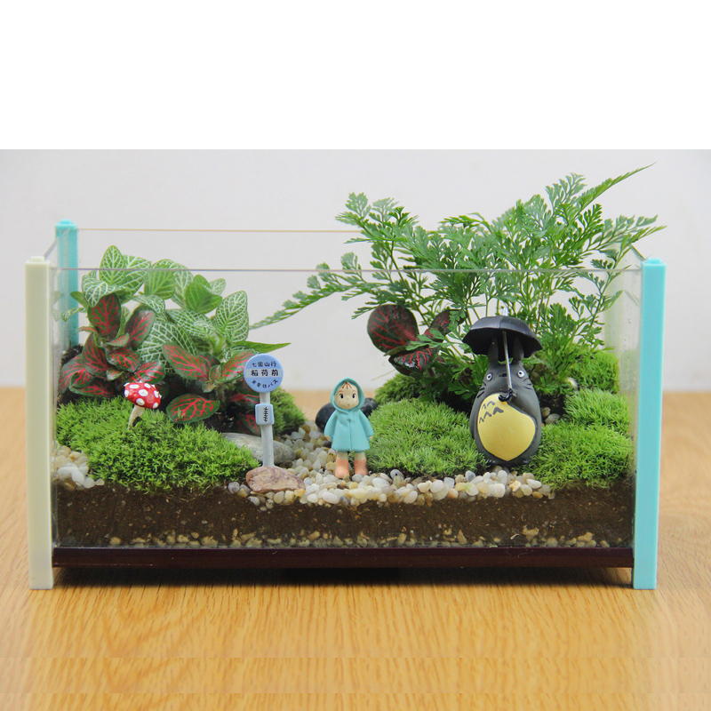 Moss micro landscape ecology glass potted office desktop diy creative mini plant potted ornaments chinchillas