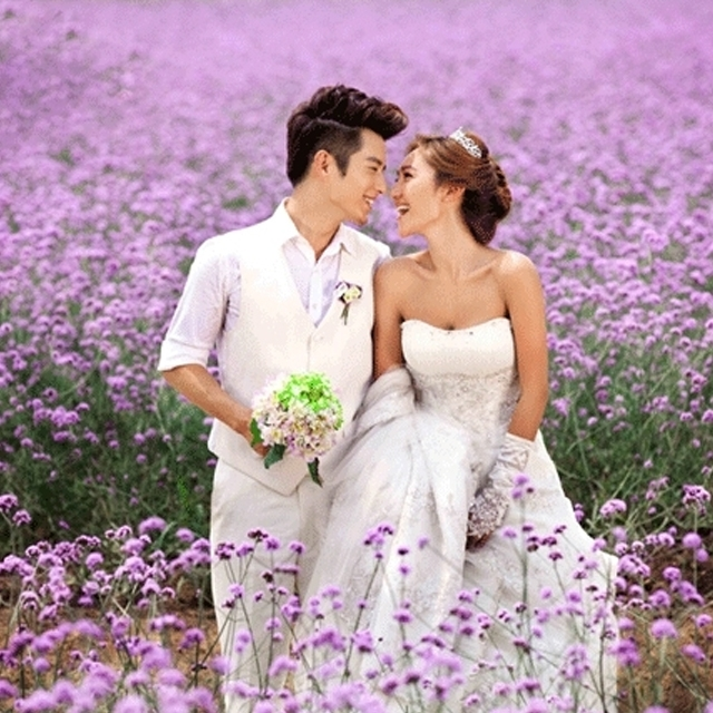 Np wuxi buy wedding photography personalized fashion korean wedding photo wedding photos without stannum vine fashion photography