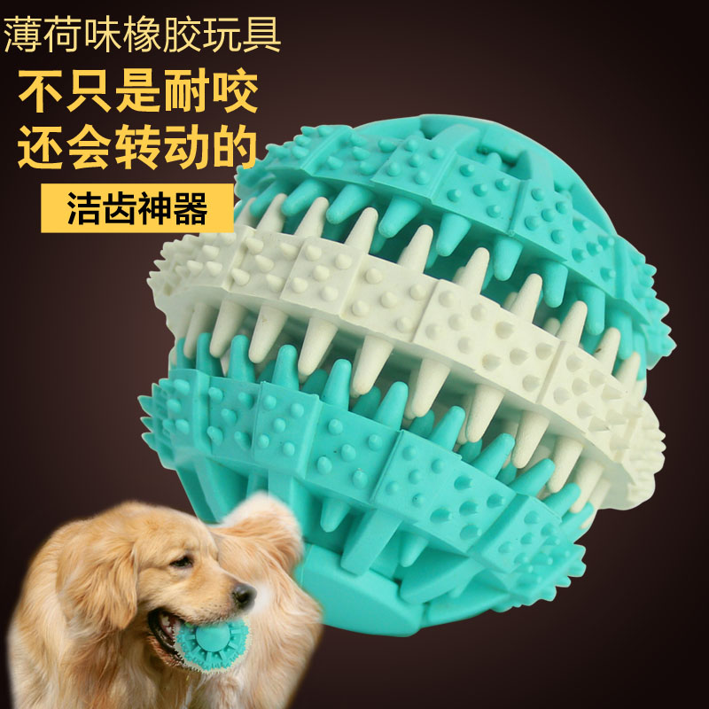 Pet toy dog toy rubber ball chews toothpaste dentifrice nail ring thanmonolingualsat nonvenomous goldens toy ball