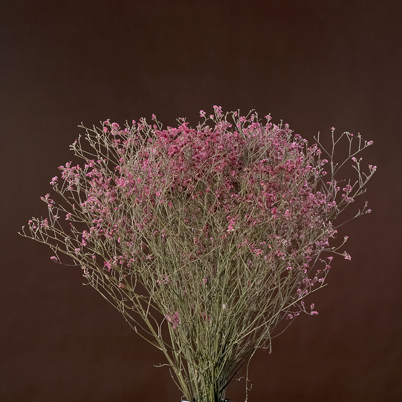 Pink crystal natural grass indoor artificial flowers bouquet of dried flowers artificial flowers decorate the living room tearoom clubs real flowers