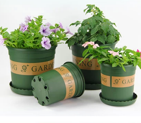 Potted strawberry printing 1 gallons/2 gallon plastic pots large pots plants gardening pots printing circular basin