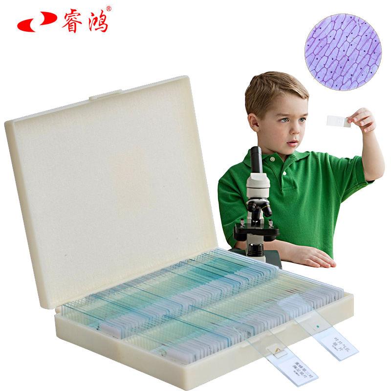 Rui hung chaper by 91 microscope biological specimens slice slide specimens of plant and animal microscopic observation science