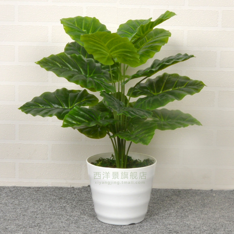 china silk green plants, china silk green plants shopping guide at