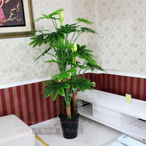 Special artificial plants artificial flowers artificial tree decoration feng shui lucky tree fatsia