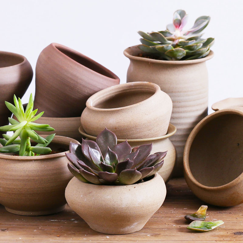 Succulents ceramic flower pots and more meat pots pots creative personality ceramic stoneware pots fleshy plant pots