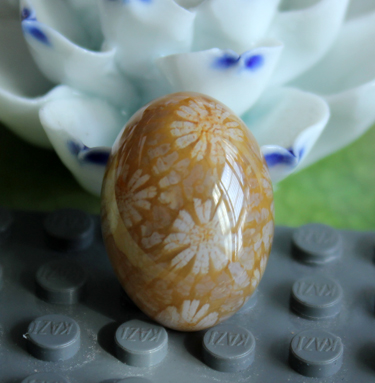 Talasite bingpo natural genuine coral玉戒face large chrysanthemum flower good jade good coral fossil stone