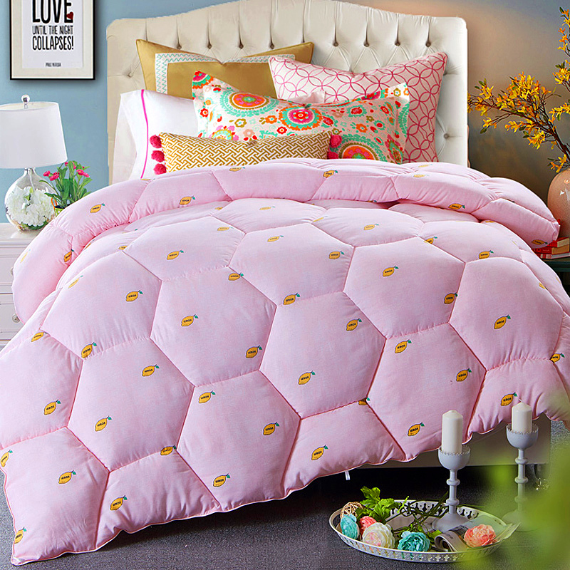 Thick winter quilt is the core warm winter is winter quilt bedding sheets were double student spring is special