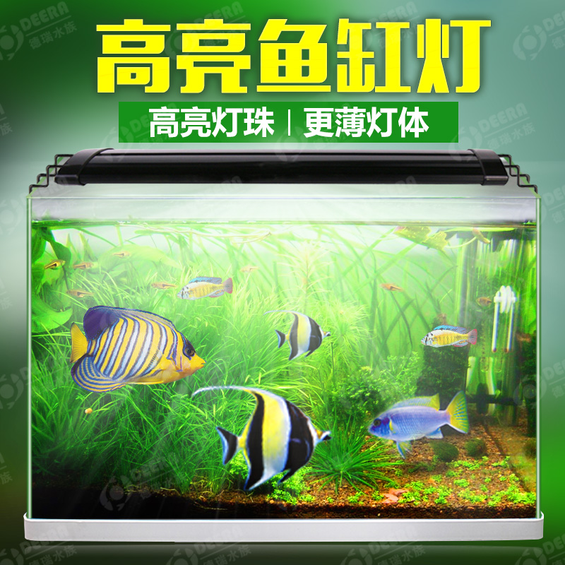 Waterweeds lights aquarium lights led lights diving lights aquarium lighting aquarium lights waterproof lamp holder lamp color arowana