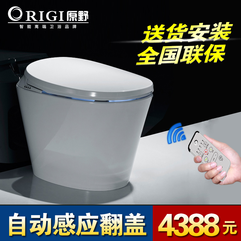 Wilderness automatic integrated induction flip smart toilet without cistern tankless toilet toilet