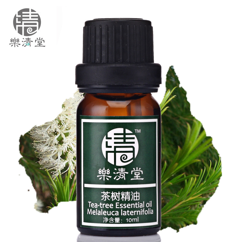 Yueqing church of taiwan tea tree oil 10 ml relieve acne acne clean pores firming essential oils