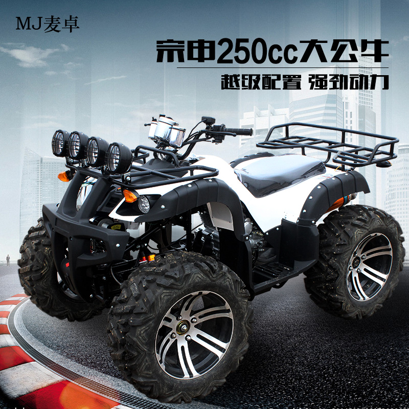 Zongshen 150-250cc big bull atv atv motocross 14 inch car shipping
