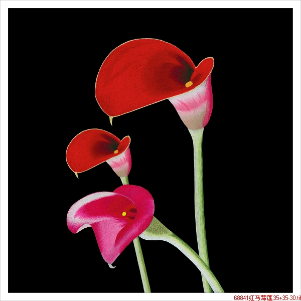 Ancient wu female red embroidery embroidery beginner diy kit red calla frameless send tutorial