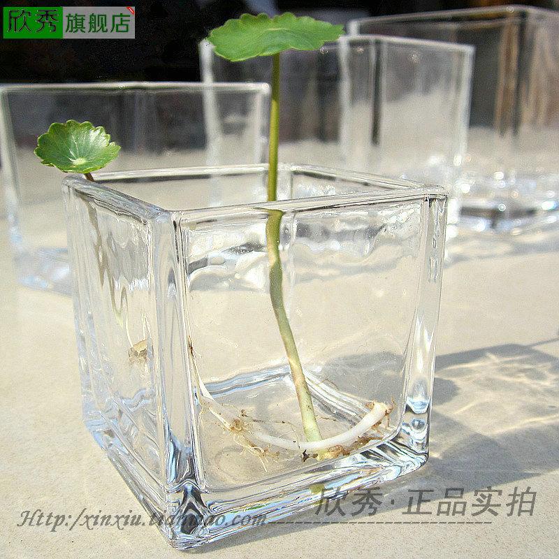 China Cylinder Glass Vase China Cylinder Glass Vase Shopping Guide