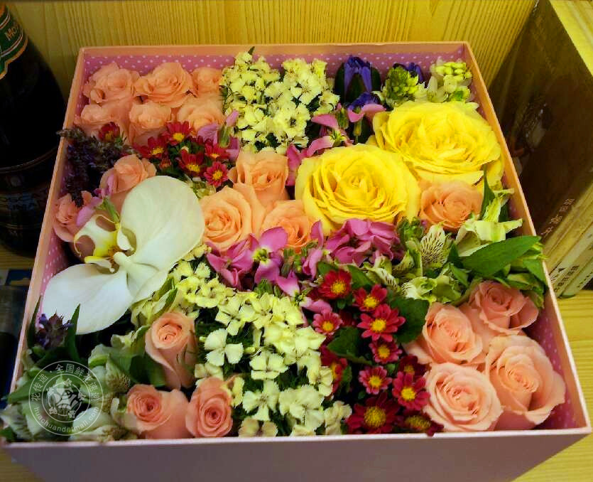 End of imports rose courtship gift birthday gift of flowers beijing flowers shanghai city courier florist