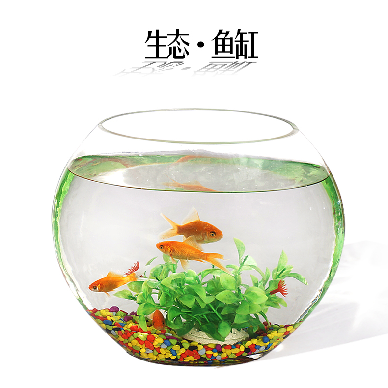 Anfuku scales creative desk aquarium fish tank ecology flat transparent glass goldfish bowl turtle tank hydroponic containers shipping