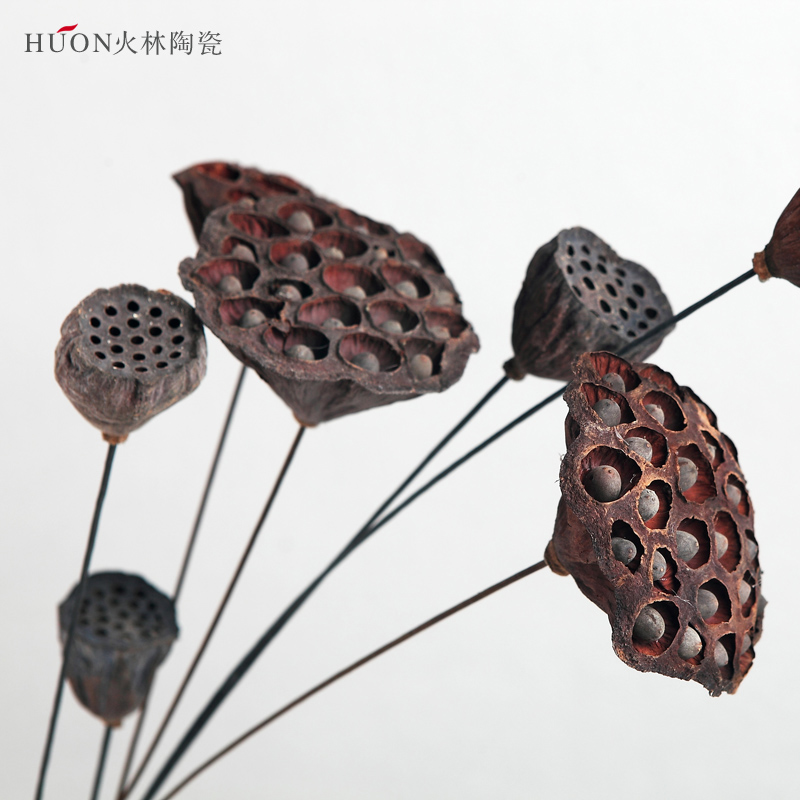 China lotus flower dried china lotus flower dried shopping guide at get quotations art dried flowers inserted full with a dry lotus flower lotus seed metal rod days of mightylinksfo