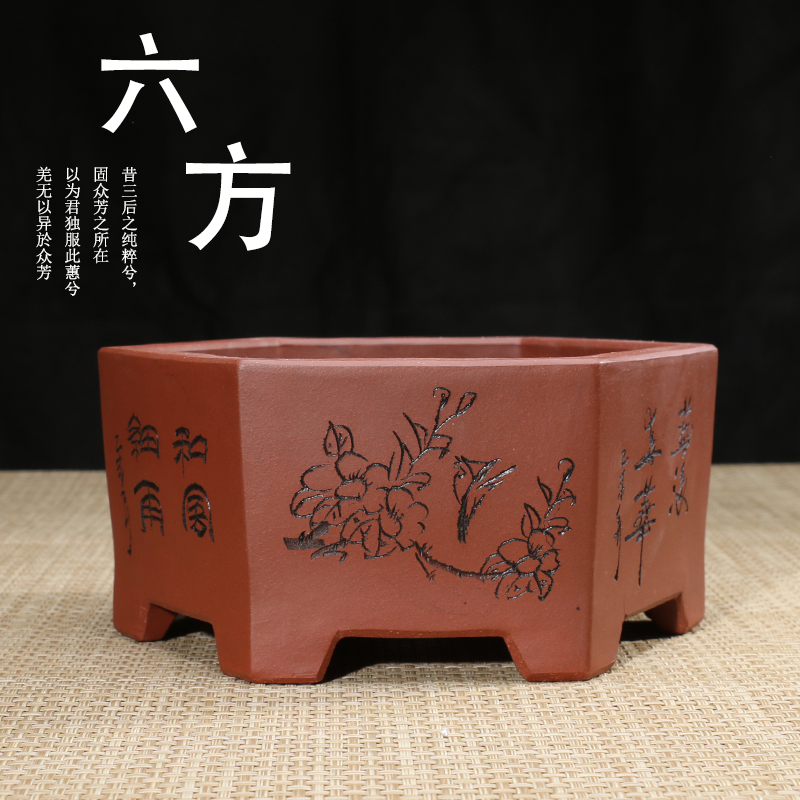 Get Quotations Bonsai Pots Yixing Purple Clay Potore Meat Plants Gardening Personality Clical Middle