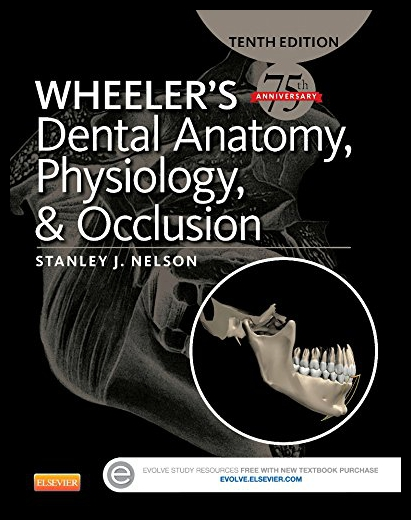 [Booking] wheeler 's dental anatomy, Physiology and occlusio