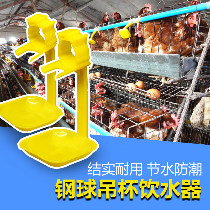 Chicken with automatic hanging cup chicken with nipple drinkers poultry farming equipment supplies drinking water mouth thin yellow