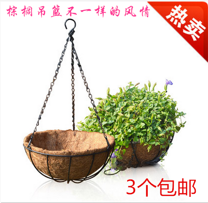 Coir diaopen round with european creative hook chains and chains hanging pots hanging pots and more meat plants chlorophytum