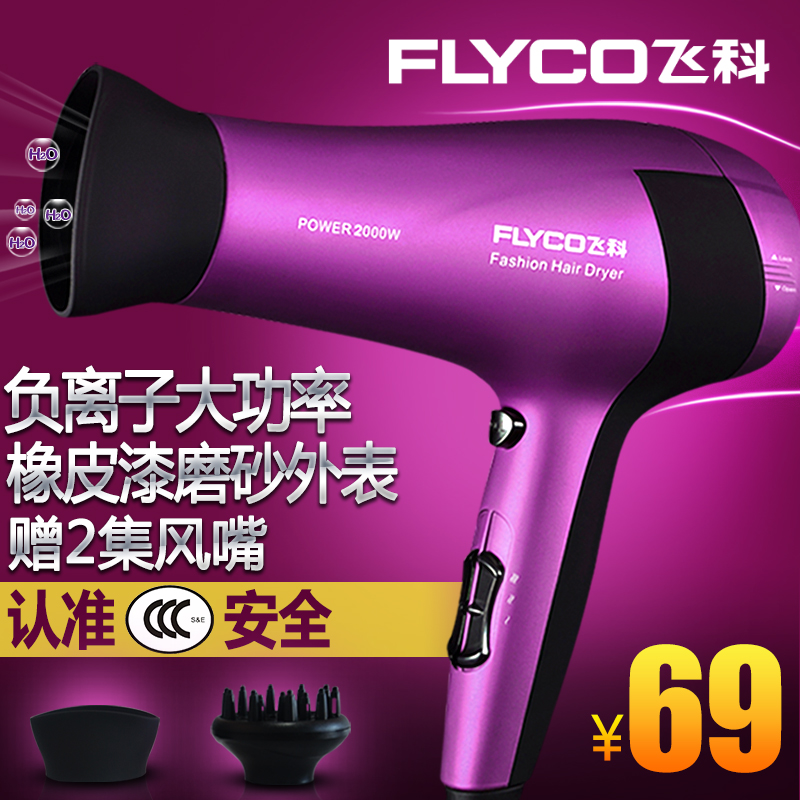 Flying branch fh6618 hair dryer hair dryer household power hair dryer anion hair dryer cold wind wind across the country