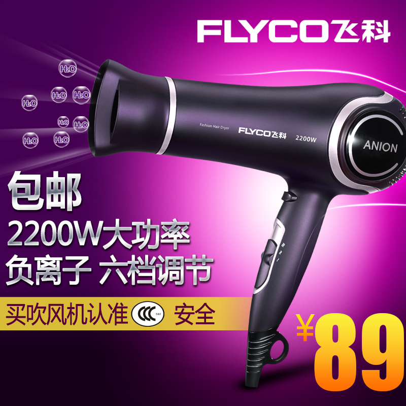 Flying branch fh6620 hair dryer hair dryer cold wind power mute hair dryer hair dryer anion hair dryer professional hair gallery