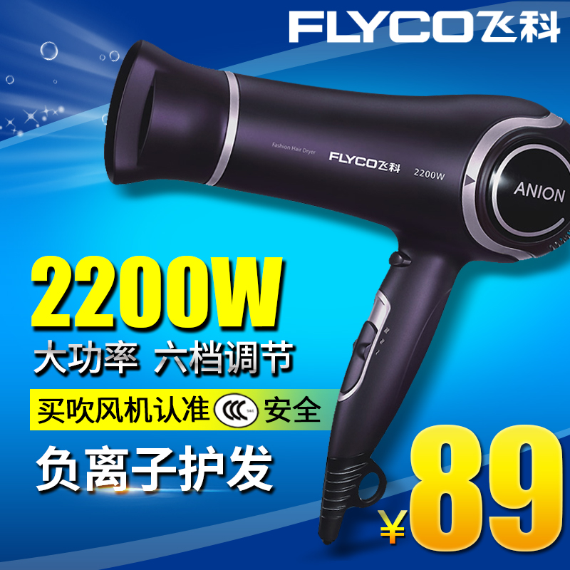Flying branch hair dryer flying branch fh6620 hair dryer cold wind power anion hair dryer professional salon mute