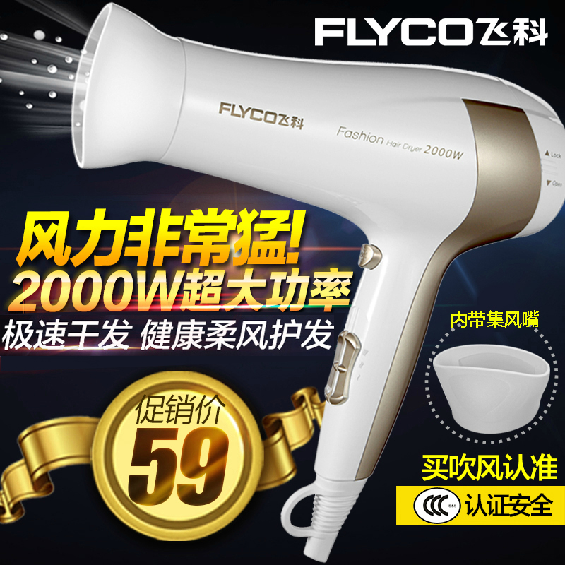 Flying branch hair dryer hair dryer household dormitory cold wind power professional salon hair dryer hair dryer hair dryer mute genuine