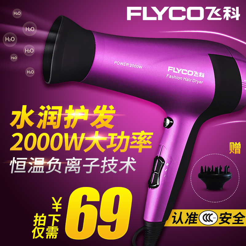 Flying branch hair dryer household power hair dryer anion hot and cold air branch fh6618 salon hair dryer mute