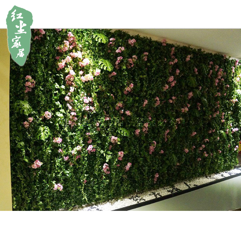 China Live Indoor Plants, China Live Indoor Plants Shopping Guide at ...
