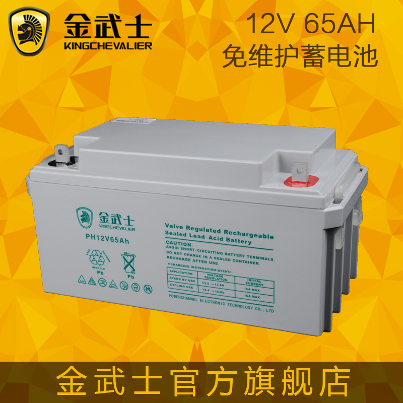 Jin wushi 12v65ah maintenance-free battery ups battery lead acid battery access control security market warranty for three years