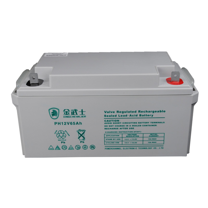 Jin wushi ups ups power supply maintenance-free battery 12v65ah ups battery lead acid battery
