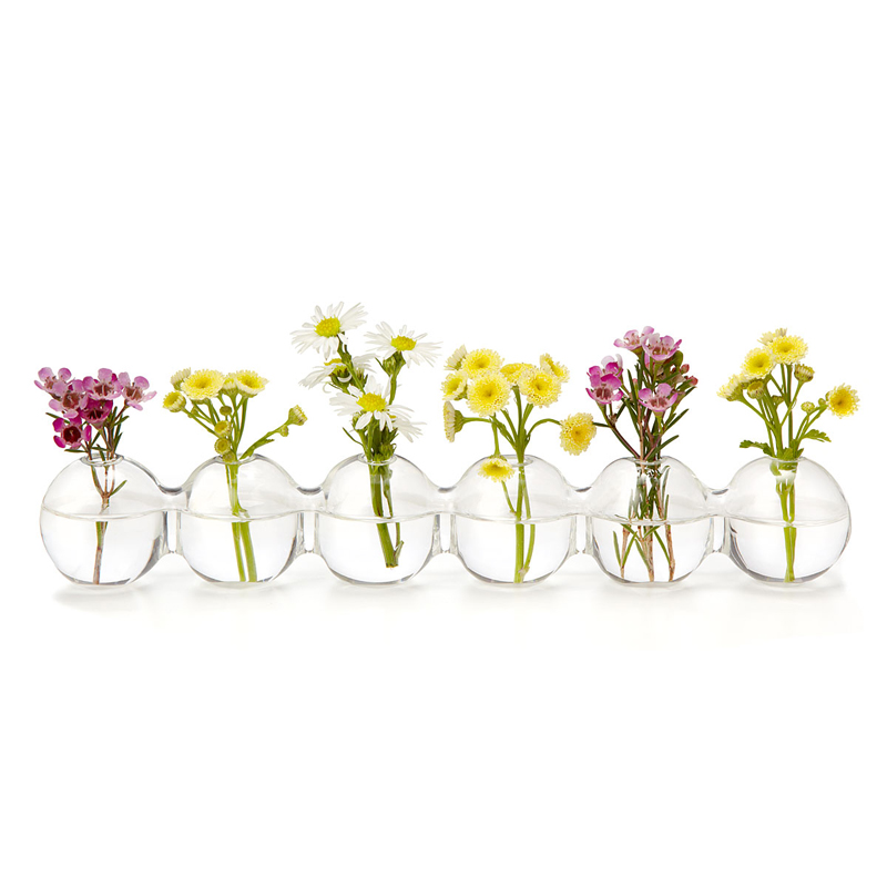 Mxmade super beautiful 6 piece european creative fashion transparent glass vase flower hydroponic home accessories
