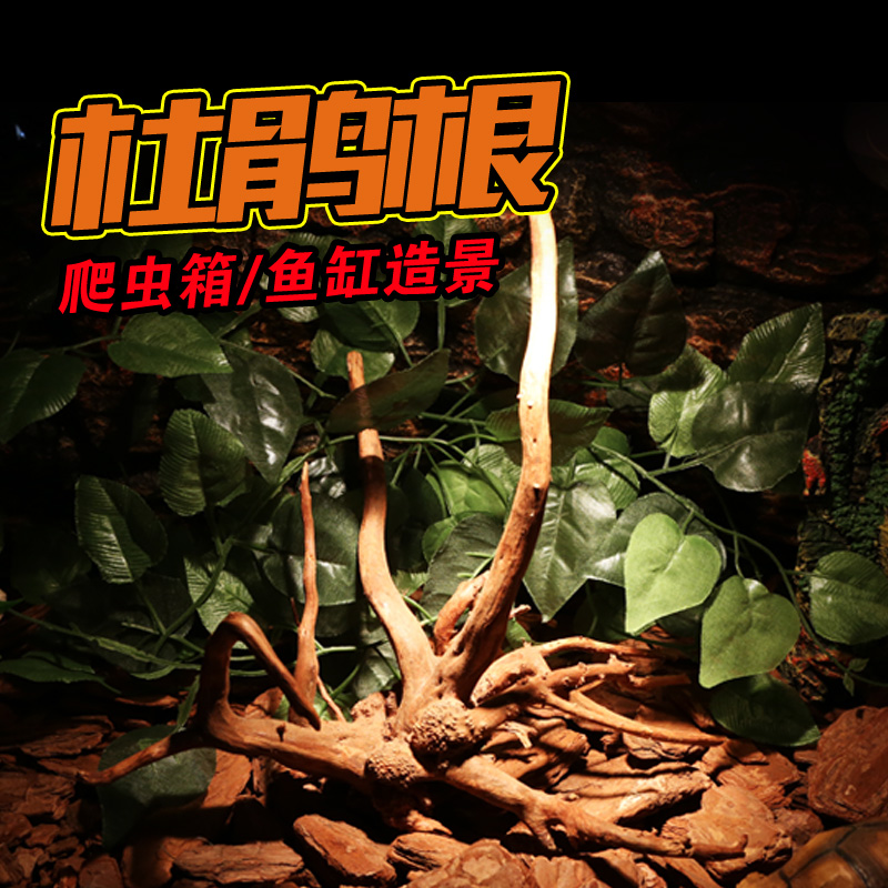Natural rhododendron root driftwood rhododendron root climbing gecko lizard pet reptiles crawl landscaping aquarium fish tank landscaping plants
